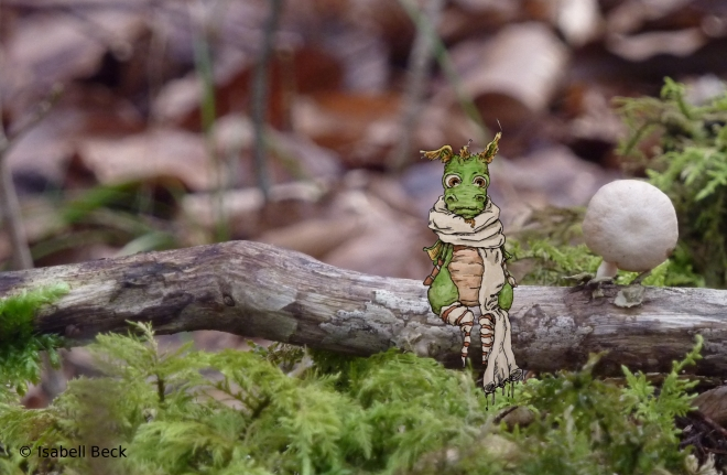 Hasenfus auf Waldpilzsuche