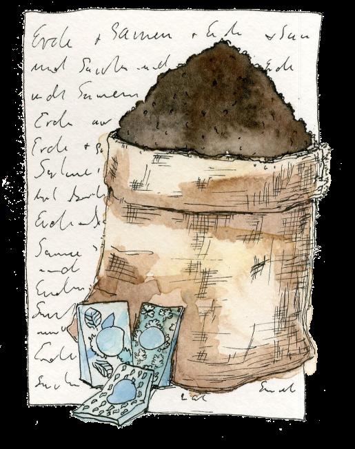 """Erde und Samen - Illustration zu """"Studentengarten"""" - Ein DIY im Studentenmagazin """"Presstige"""""""